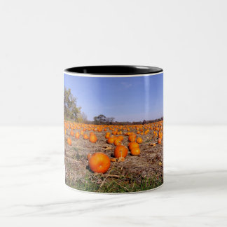 Pumpkin Patch-mug Two-Tone Coffee Mug