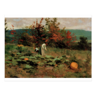 pumpkin-patch postcard