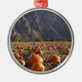Pumpkin Patch Silver-Colored Round Ornament
