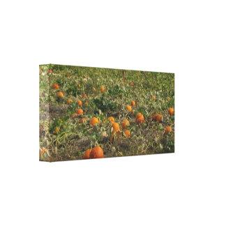 Pumpkin Patch Wall Art