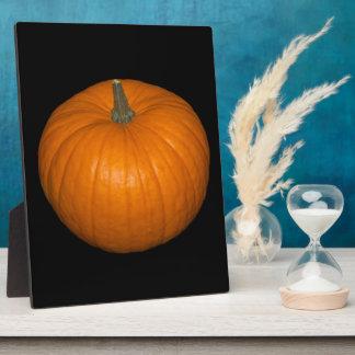 Pumpkin Photo on Black Background Plaque