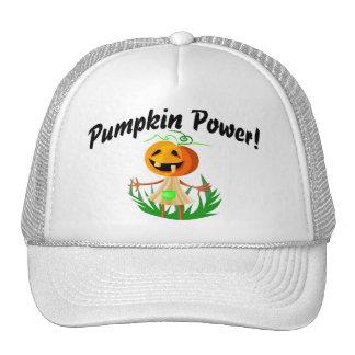 Pumpkin Power 2 Hats