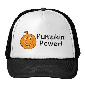 Pumpkin Power Mesh Hats