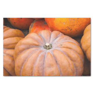 Pumpkin Season Tissue Paper
