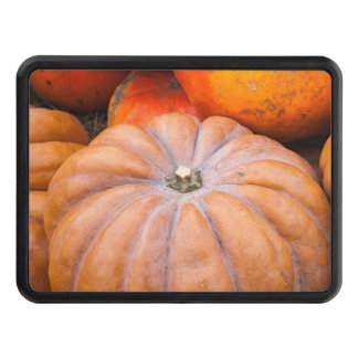 Pumpkin Season Tow Hitch Covers