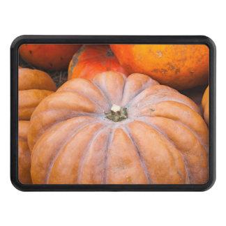 Pumpkin Season Trailer Hitch Cover