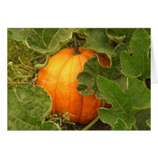 Pumpkin Spice Greeting Card