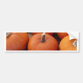 Pumpkin Time Bumper Sticker