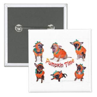 Pumpkin Time Chihuahuas 2 Inch Square Button