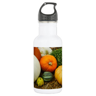 Pumpkins And Gourds 532 Ml Water Bottle