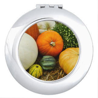 Pumpkins And Gourds Compact Mirrors