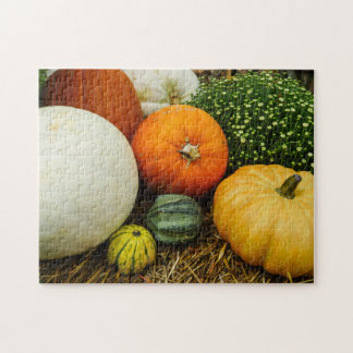 Pumpkins And Gourds Jigsaw Puzzle