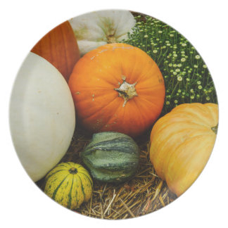 Pumpkins And Gourds Party Plate