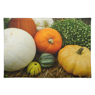 Pumpkins And Gourds Placemat