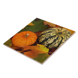 Pumpkins and Leaves Tile