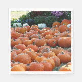 Pumpkins and Mums Autumn Harvest Photography Paper Napkin