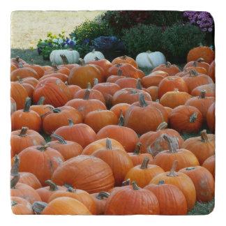 Pumpkins and Mums Autumn Harvest Photography Trivet