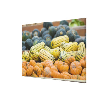 Pumpkins and squash on display at farmer's canvas print