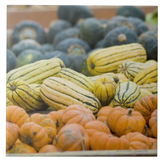 Pumpkins and squash on display at farmer's ceramic tile