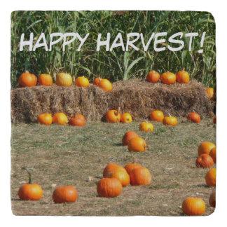 Pumpkins, Corn and Hay Autumn Harvest Photography Trivet