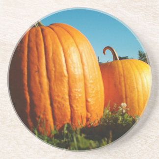 Pumpkins_Hancock_Shaker_village_2418 Coaster