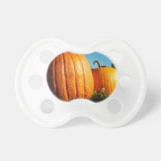 Pumpkins_Hancock_Shaker_village_2418 Pacifier