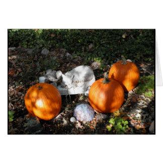 Pumpkins in Dappled Light Greeting Card