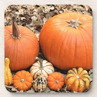 Pumpkins In Leaves Coaster