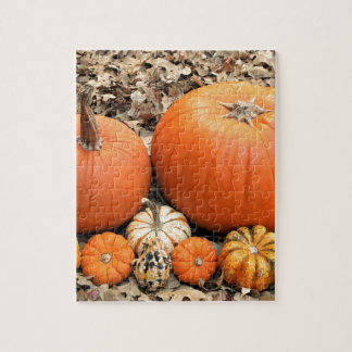 Pumpkins In Leaves Jigsaw Puzzle