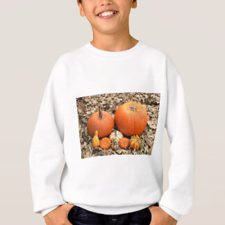 Pumpkins In Leaves Sweatshirt