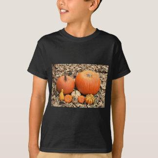 Pumpkins In Leaves T-Shirt