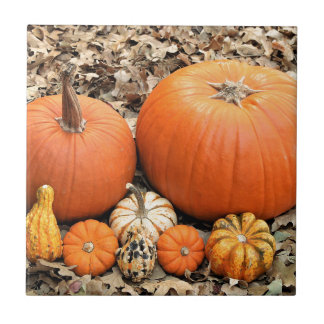 Pumpkins In Leaves Tile