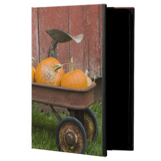 Pumpkins in old wagon iPad air cases