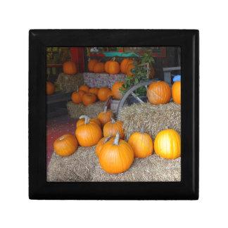 Pumpkins on Straw Gift Box