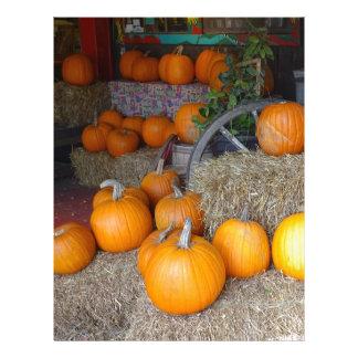 Pumpkins on Straw Letterhead