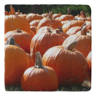 Pumpkins Photo for Fall, Halloween or Thanksgiving Trivet