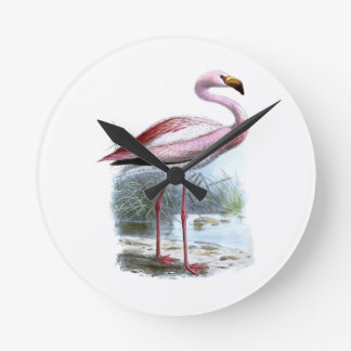 Puna Flamingo Clocks