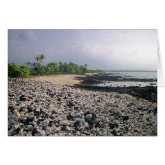 Punalu'u Black Sand Beach Card