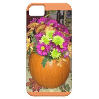 Punkin Vase iPhone 5 Case