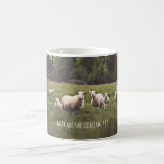 Punny Sheep with Attitude photo country pasture Coffee Mug