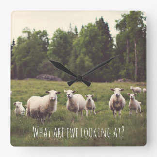 Punny Sheep with Attitude photo Country Pasture Square Wall Clock
