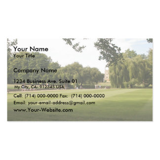 Punting On The Camb. Uk. Business Cards