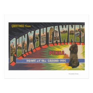 Punxsutawney, Pennsylvania (Groundhog) Postcard