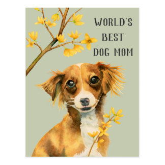 Pup and Forsythia | Dog Mom | Mother's Day Postcard