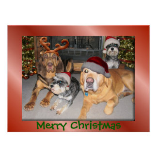 Pup Merry Christmas Poster