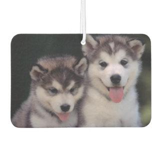 Puppies Air Freshner Air Freshener
