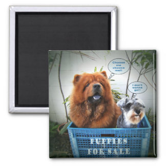 Puppies For Sale Magnet