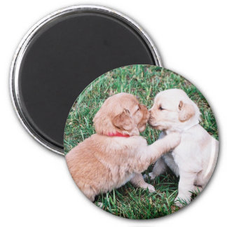 Puppies Kissing Magnet