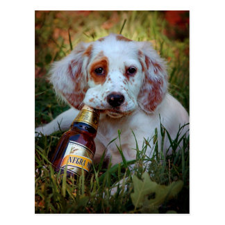 Puppy and Beer Bottle Postcard