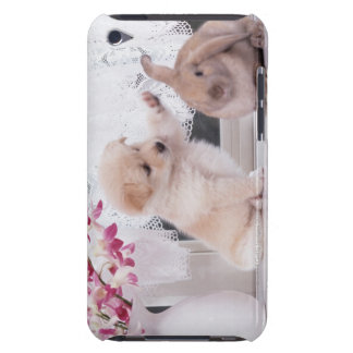 Puppy and Lop Ear Rabbit iPod Touch Cover